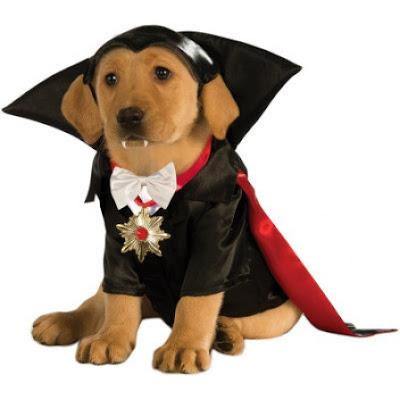 disfraces de halloween para perros vampiro