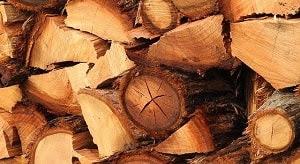 Secara garis besar faktor penyebab kerusakan kayu yang timbul selama proses pengeringan disebabkan oleh tiga hal yaitu akibat penyusutan kayu, serangan jamur pembusuk, dan bahan kimia di dalam kayu.