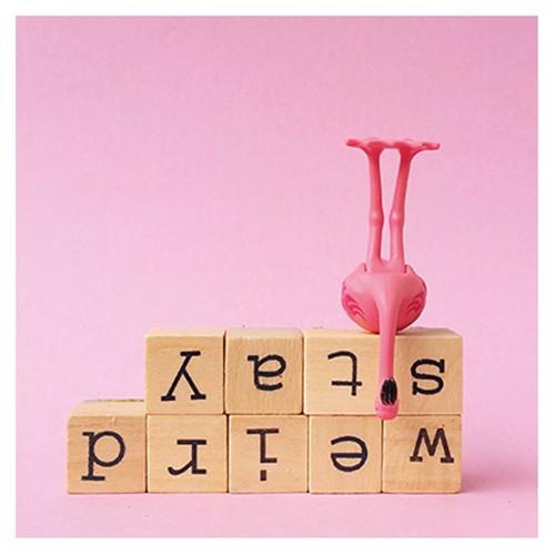 https://www.shabby-style.de/flamingo-grusskarte-stay-weird