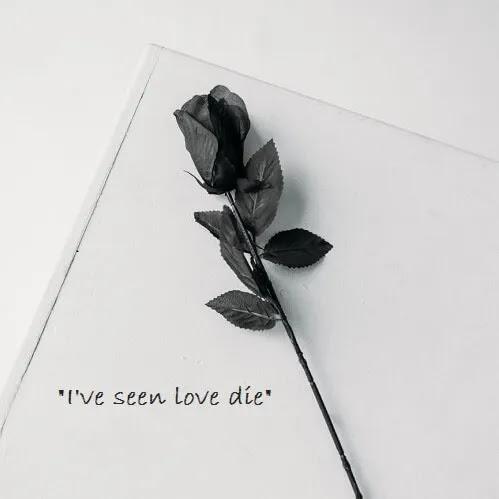 I've seen love die DP for girls