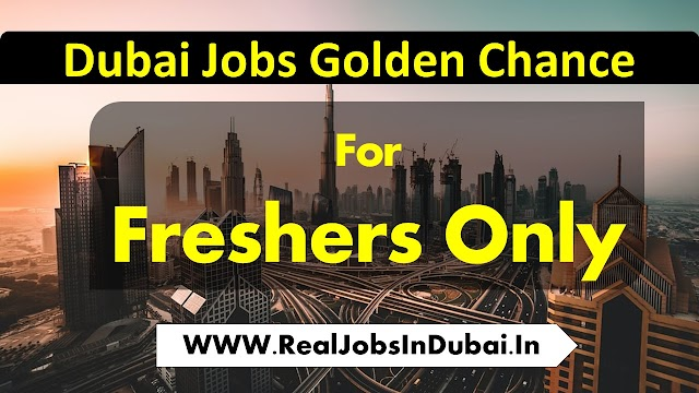 Fresher Jobs In Dubai , Abu Dhabi , Sharjah, & Ajman.