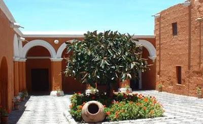 Foto al árbol dentro del Convento de Santa Catalina