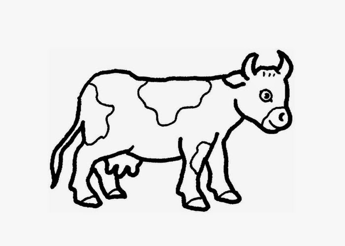 Baby cow coloring page | Free Coloring Pages and Coloring ...