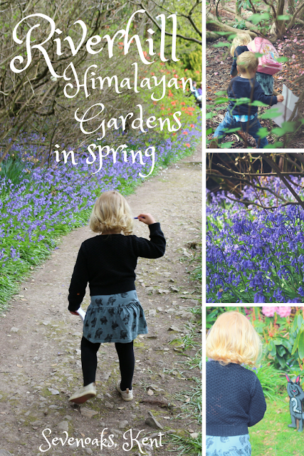 An Easter bunny hunt and bluebells at Riverhill Himalayan Gardens near Sevenoaks - things to do with children in West Kent in Spring