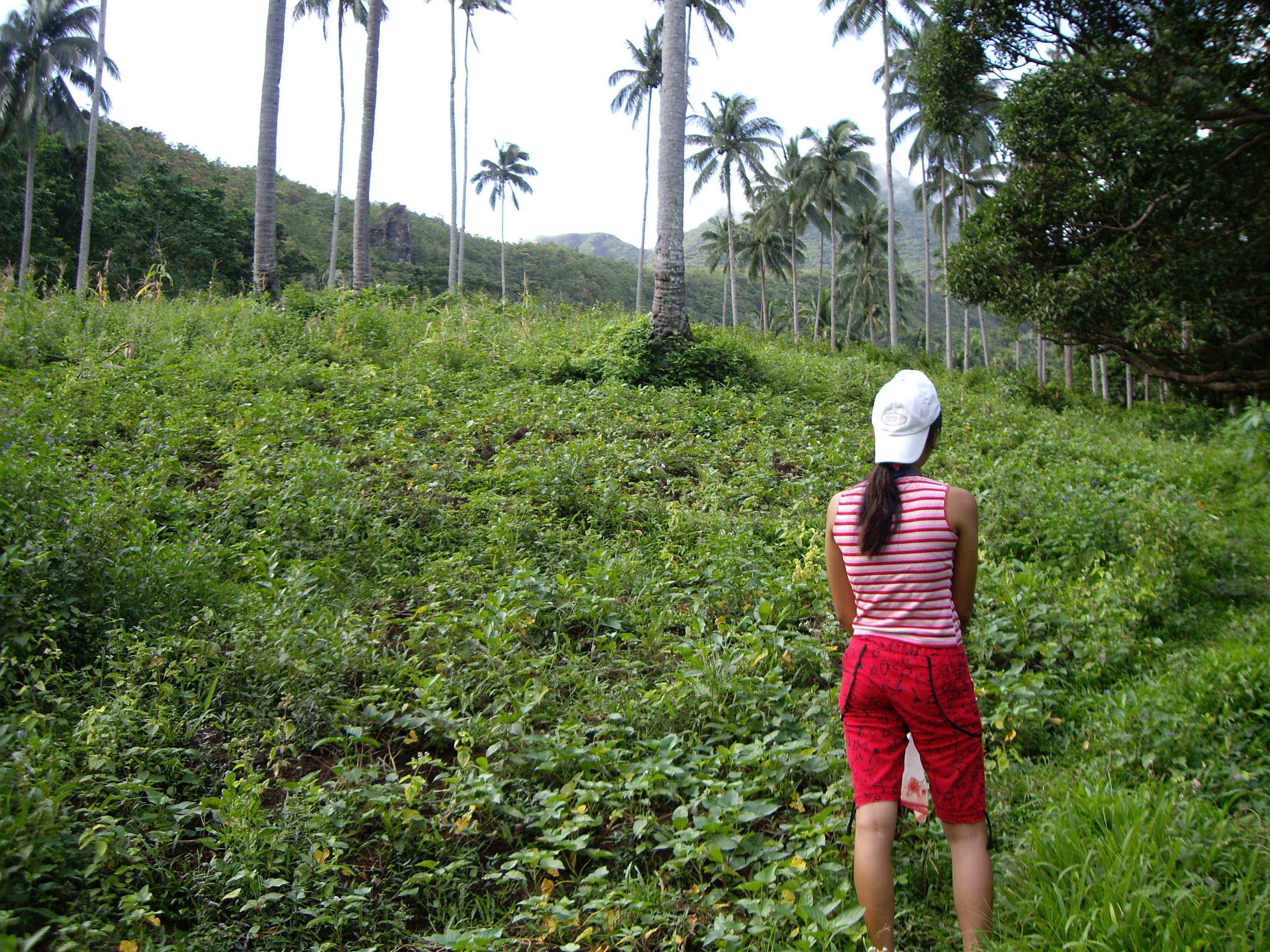 A Day for a hiked to mount Hibok-Hibok, Camiguin Island.