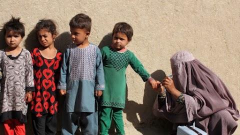 Több pakisztáni iskolát bezártak a gyermekbénulás elleni oltókampány akadályozása miatt