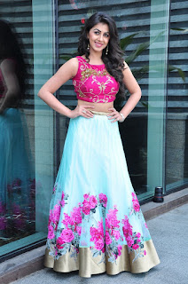 Actress Nikki Galrani Stills in Lehenga Choli at Malupu Movie Interview 0028