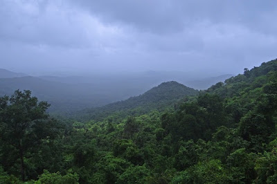 Best National Park in India, Gir National Park, Gujarat