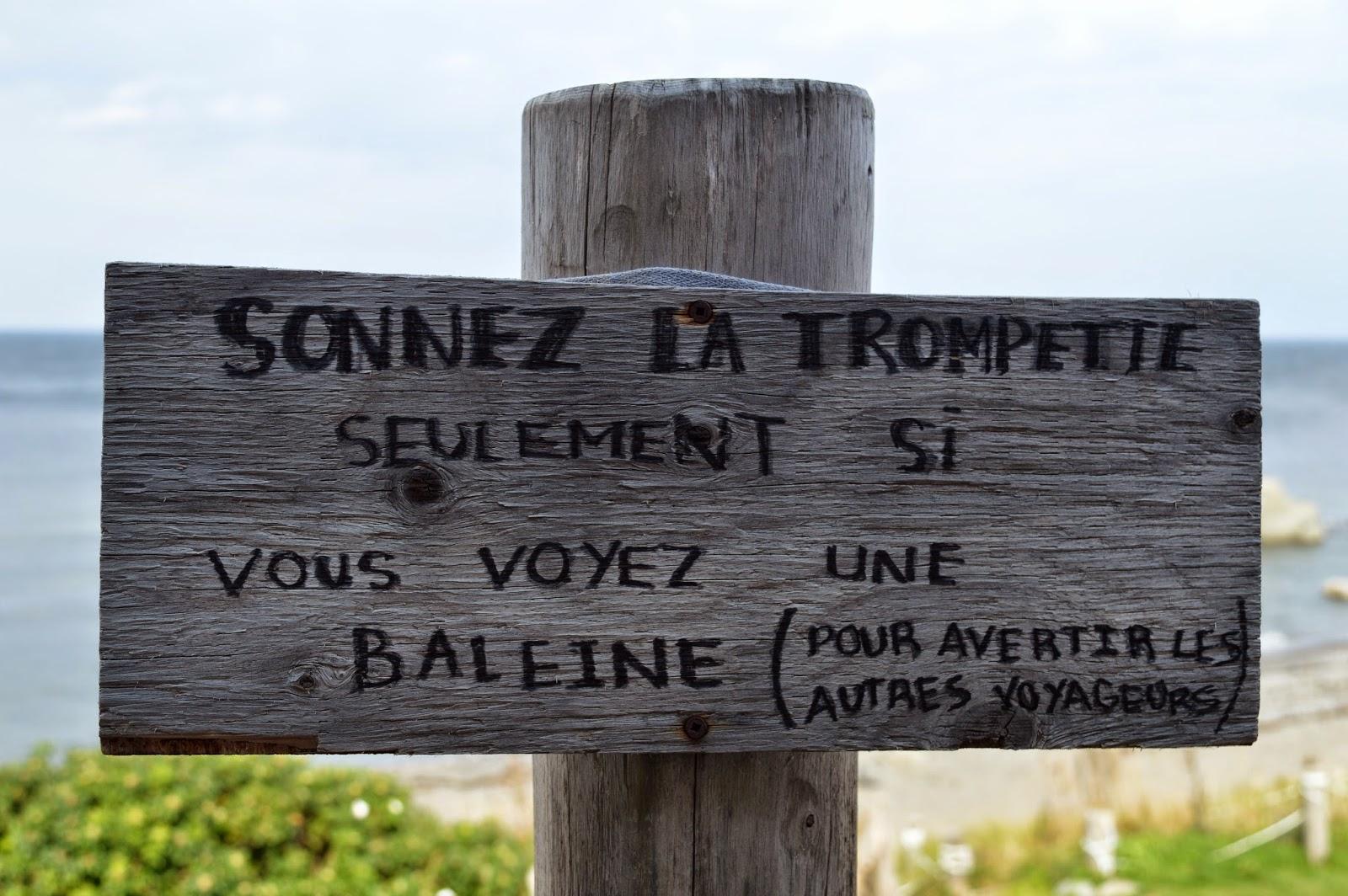 Gaspésie, Sainte-Anne-des-Monts