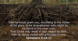 Our Daily Bread (ODB) + Insight: 30 September 2020 - Rooted In Love