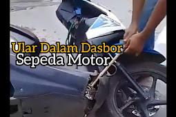 Ular Masuk Dasbor Sepeda Motor