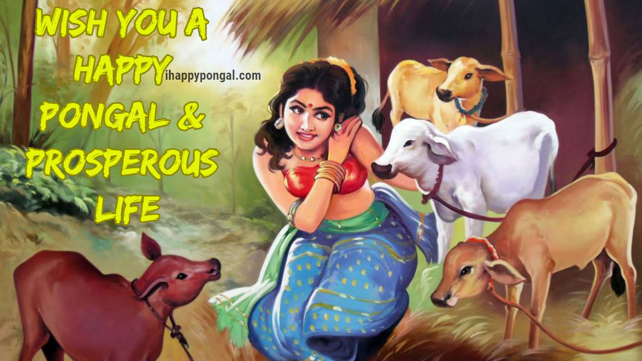Pongal Wishes Happy Pongal 2018 Pongal Greetings Happy Pongal