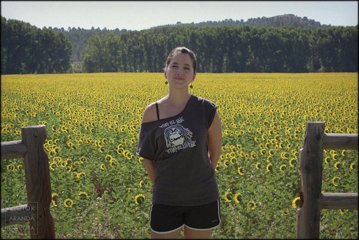 fotografia,retrato,naturaleza,girasoles,flores,cuenca