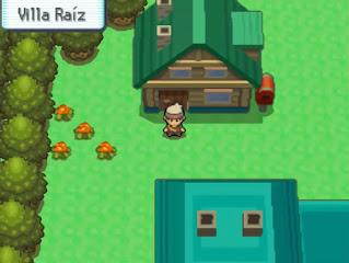 Pokemon Rubi Magma y Rubi Omega para NDS Villa Raiz