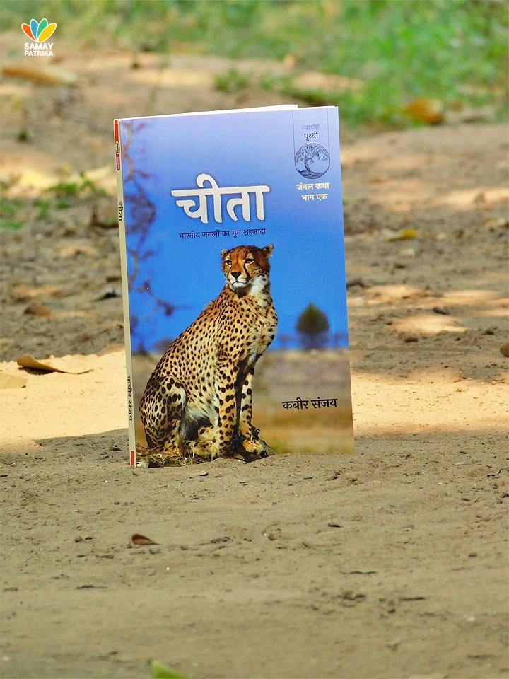 cheetah-book-review