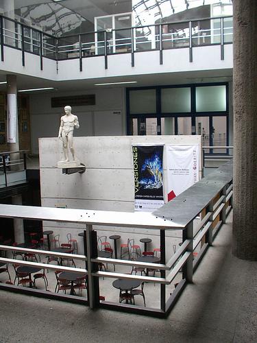 Especialización en Gerencia de Proyectos UNAM