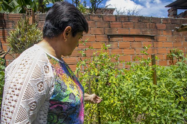 Seguridad Alimentaria en Medellín
