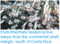 http://sciencythoughts.blogspot.co.uk/2012/03/hydrothermaly-heated-active-seeps-from.html