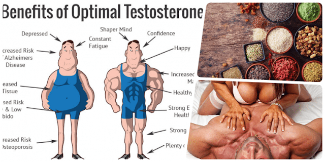 Best Superfoods To Increase Testosterone Levels