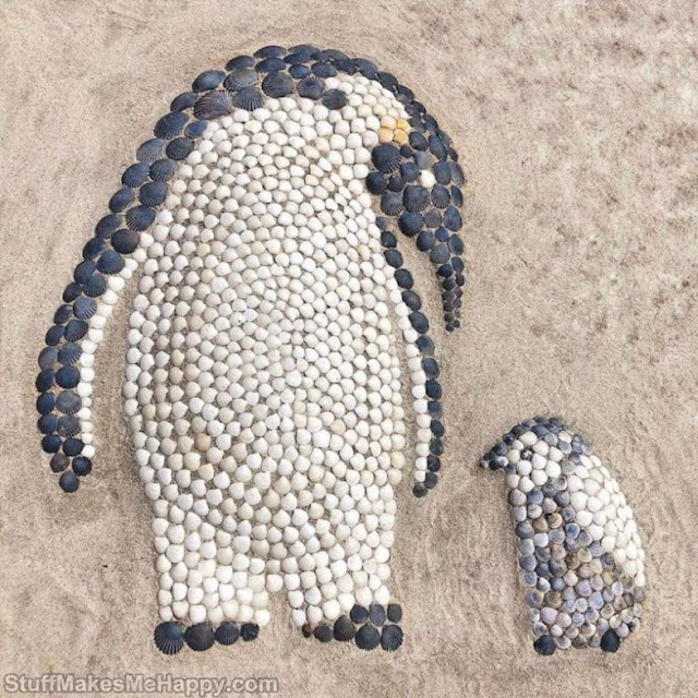 Anna Chan illustrates outstanding animal shapes with Seashells