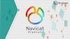 Navicat Premium Manajemen Database