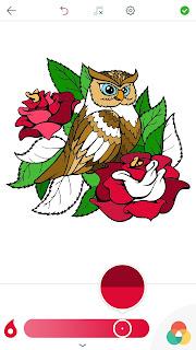 Owl%2BColoring%2BPages%2BiPhone%2BScreenshot%2B3.jpg