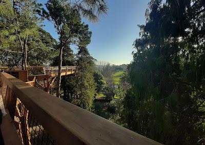 TreeTop no Parque de Serralves