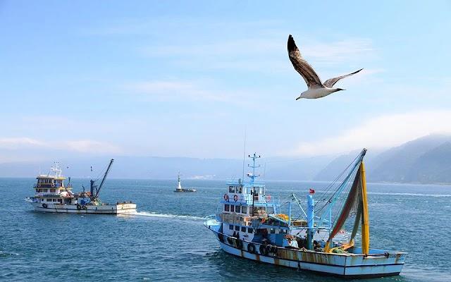 Παραβίαση από τουρκικά αλιευτικά στη Γαύδο διαχειρίστηκε το Λιμενικό-Σε επιφυλακή και το ΠΝ