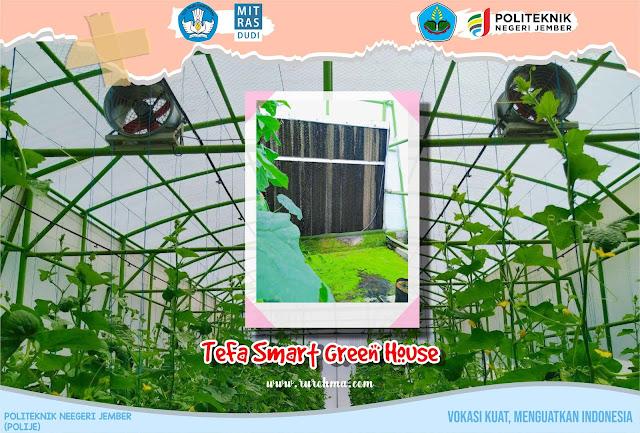 TeFa Smart Green House Polije