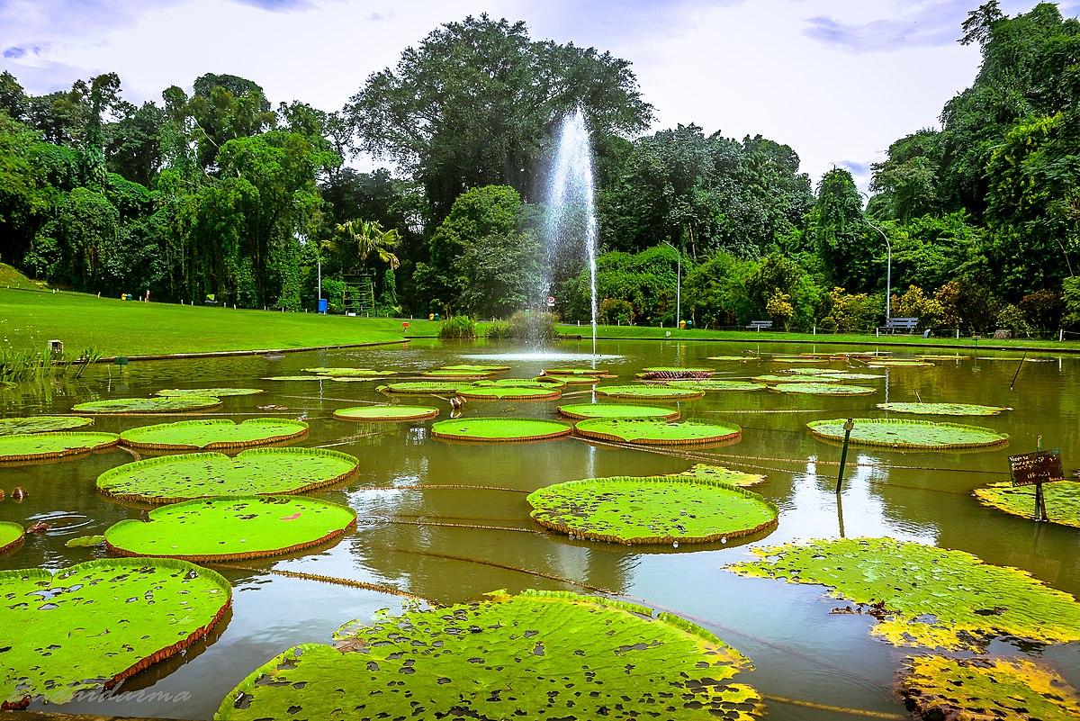 5 Tempat Wisata Di Bogor Yang Sudah Dibuka Kembali