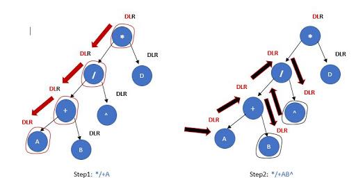 preorder traversal steps