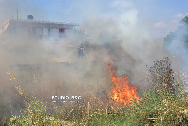 Πυρκαγιά στην Αργολίδα κοντά σε σπίτια (βίντεο)