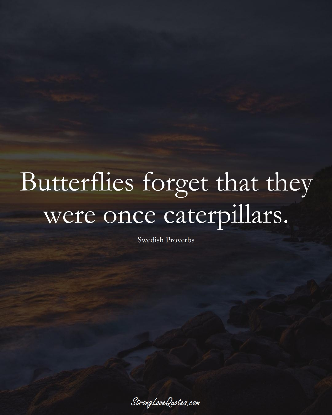 Butterflies forget that they were once caterpillars. (Swedish Sayings);  #EuropeanSayings