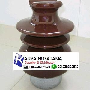 Jual Pin Isolator Tumpu Keramik  20kv 24kv Keramik di Lampung