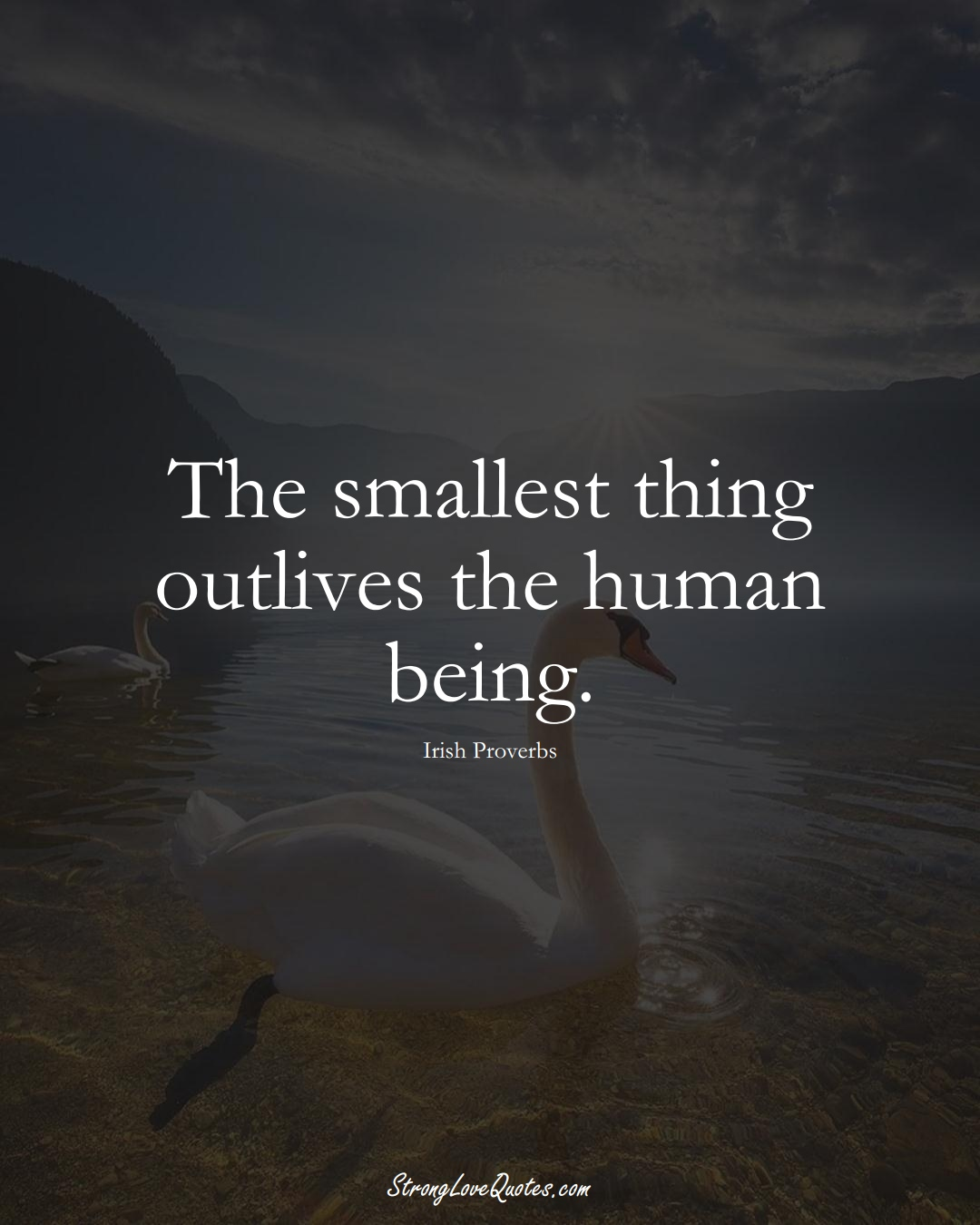 The smallest thing outlives the human being. (Irish Sayings);  #EuropeanSayings