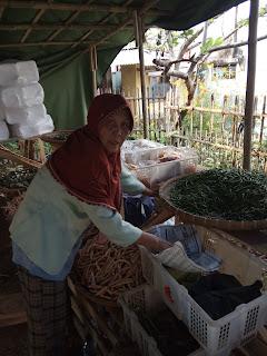 usaha toko sayuran