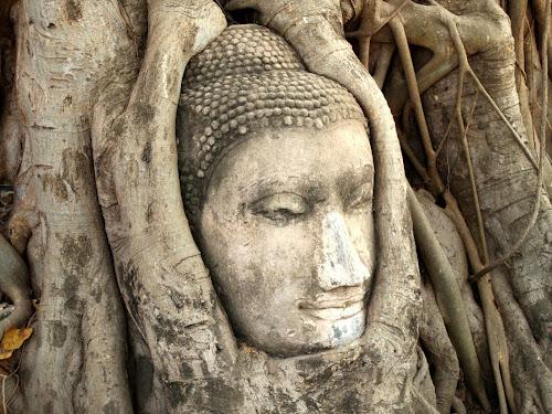 Pageofhistory buddha