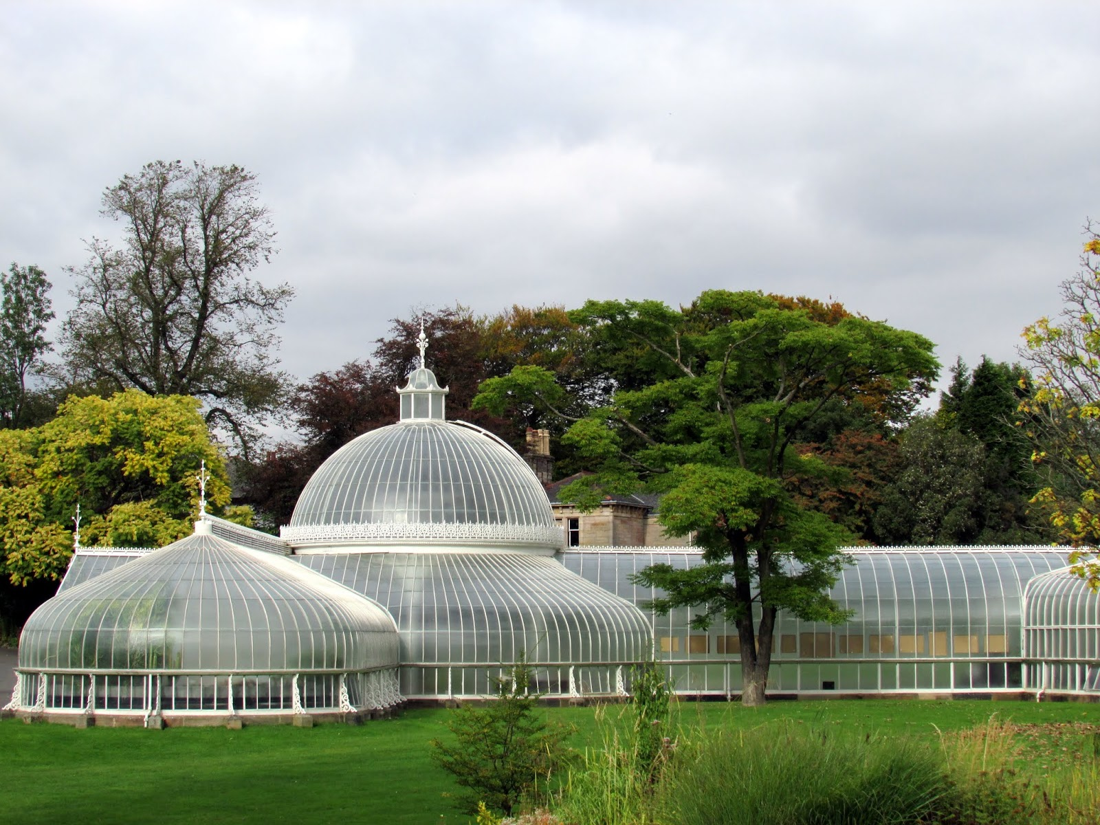 The Secret Life of Maggie May- City Guide to Glasgow, Botanic Gardens