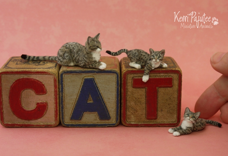 13-Tabby-Kerri-Pajutee-Miniature-Sculpture-that-look-Real-www-designstack-co