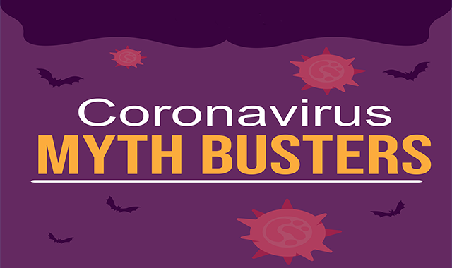 14 Common Coronavirus Myths Busted #infographic