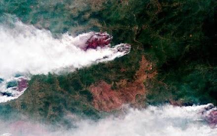 Φωτιές, καταιγίδες και κάμπιες – Η Σιβηρία «πληρώνει» ήδη την αλλαγή του κλίματος