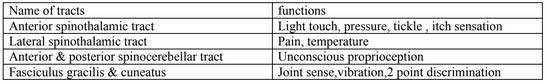 SPINAL CORD- CTEVT Spinal Cord Notes