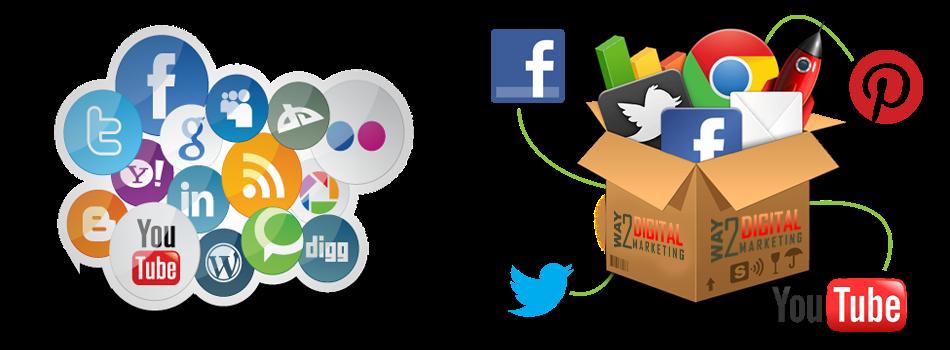 Market Rovers: Top 5 Digital Marketing Strategies