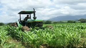 En el 2020 la produccion agricola la realizo el sector privado