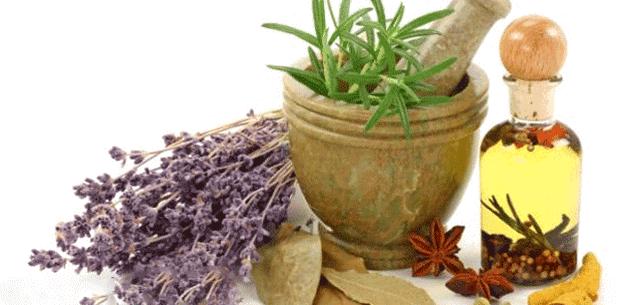 كيفية علاج الربو بالاعشاب
