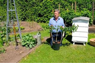 Alan Titchmarsh planting mini orchard