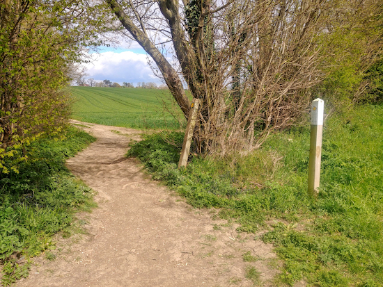 The gap in the hedgerow mentioned in point 8 below