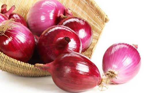 Manfaat Bawang Merah Untuk Wasir dan Ambeien