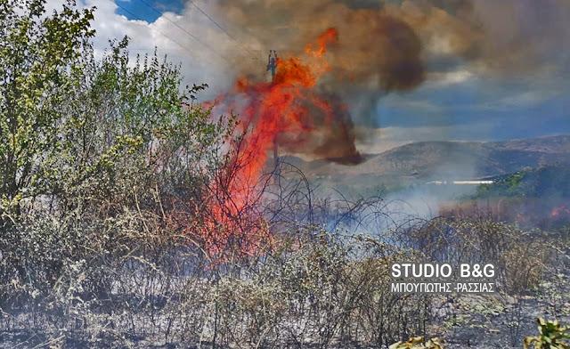 Πυρκαγιά στον κάμπο της Αργολίδας