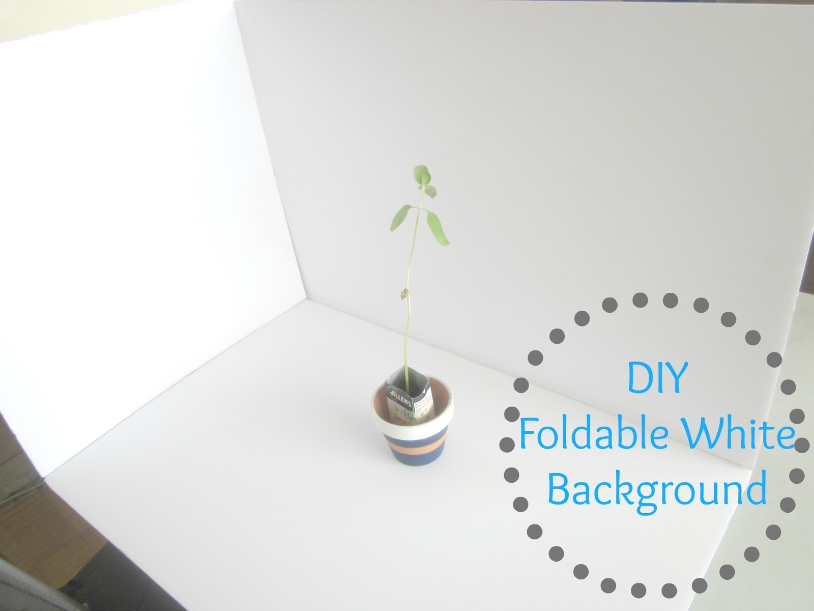 diy foldable photo white background